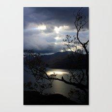 Nature's Spotlight Canvas Print