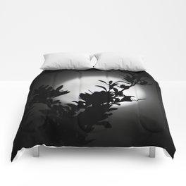Moon Beams Comforters