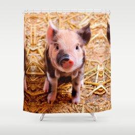 Cute Baby Piglet Farm Animals Babies Shower Curtain