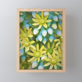 Yellow Flowers by Reay of Light Photography Framed Mini Art Print