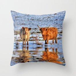 Sarah & Hamish - Highland Cattle Throw Pillow