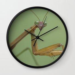 The skeptic Wall Clock