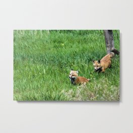 Run Little Brother Metal Print