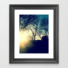 Sun Trees Framed Art Print