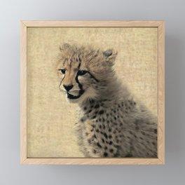 Cheetah cub Framed Mini Art Print