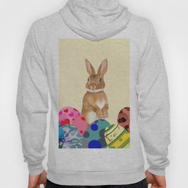 Eastern Bunny with colorful eggs Hoody