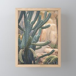 Cactus Jungle II Framed Mini Art Print