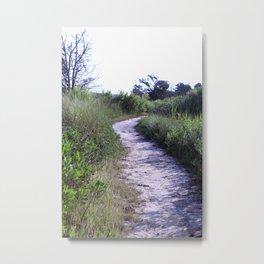 Nature Preserve Path Metal Print