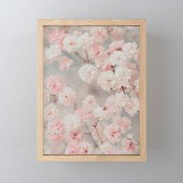 Gypsophila pink blush Framed Mini Art Print