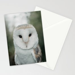 Barney The Owl Stationery Cards