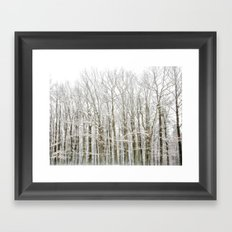 Winter Woodlands Framed Art Print
