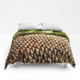 Sunflower Seeds Comforters