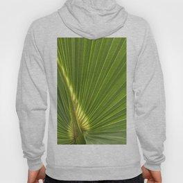 Summer Palms Hoody