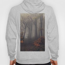 Red leaves of autumn Hoody