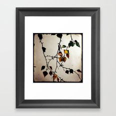 Last Days (1) Framed Art Print