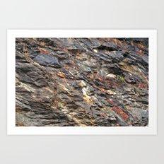Rocky Mountain Texture  Art Print