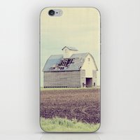 american beauty iPhone & iPod Skins featuring American Beauty Vol 15 by Farmhouse Chic