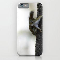 Baby Red Squirrel Slim Case iPhone 6s