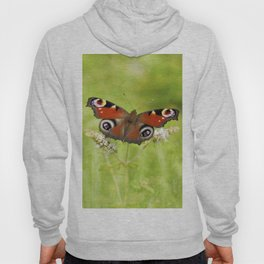The European peacock butterfly Hoody