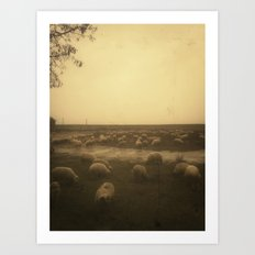 | sheep at dusk | Art Print