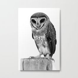 Night Owl in Black and White Metal Print