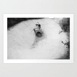 Palisades Bowl 1 Art Print