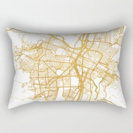 MEDELLÍN COLOMBIA CITY STREET MAP ART Rectangular Pillow