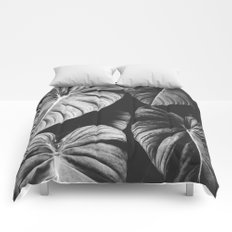 Monstera Black and White Comforters