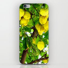 when life gives you lemons... iPhone Skin