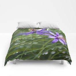 Meadow Dew Comforters
