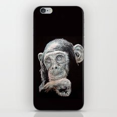 Today I see... iPhone & iPod Skin