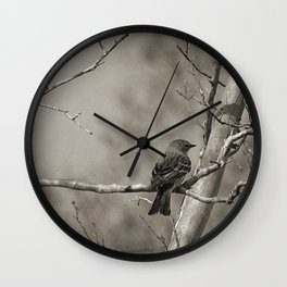 The Quest:  Black and White Bird Antiqued Wall Clock