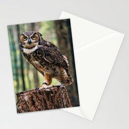 Majestic Owl Stare Stationery Cards