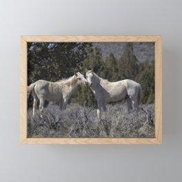 Wild Horses with Playful Spirits No 1 Framed Mini Art Print