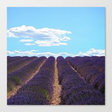 PROVENCE - Lavender | France | Travel | Summer | Purple | Nature | Landscape Canvas Print