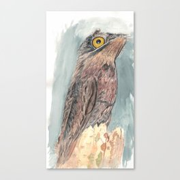 Watercolor Birds: Common Potoo Canvas Print