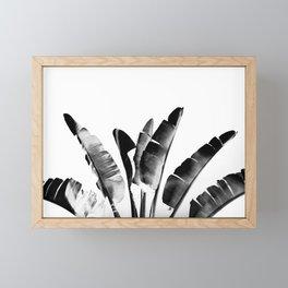 Traveler palm - bw Framed Mini Art Print