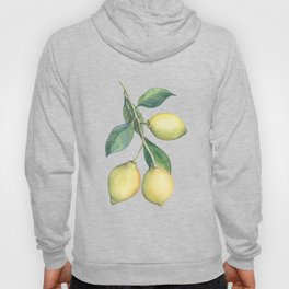 Lemon Dreams Hoody