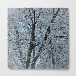 Big Tree In Snow and Blue Sky Metal Print