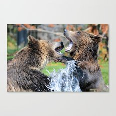 Sparring Grizzly Bears Canvas Print