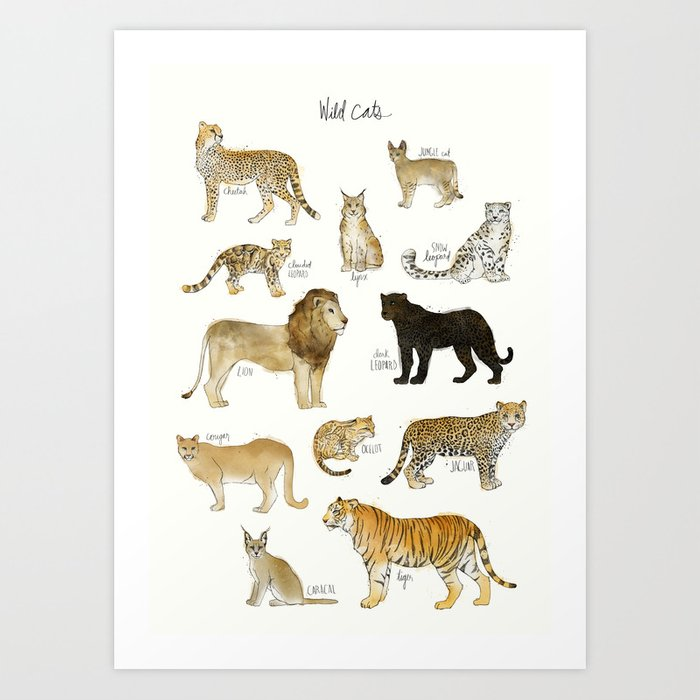Sunday's Society6 | Wild cats art print