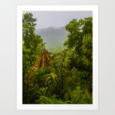 Mist Over Corcovado Art Print