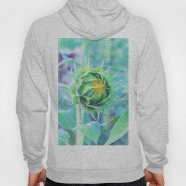 sunflower - turquoise Hoody