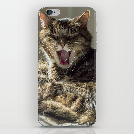 The laughing cat iPhone & iPod Skin