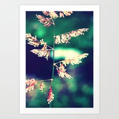 Flowers in Germany Art Print