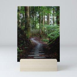 walk on the stones Mini Art Print
