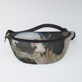 Cow Chewing Hay Fanny Pack