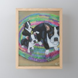 Boston Terrier and Puppies Framed Mini Art Print