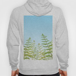 Fiddleheads and Fern Fronds Hoody