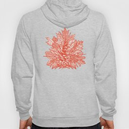 forest floor fire orange ivory Hoody